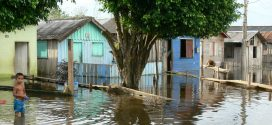 El Amazonas se está desbocando